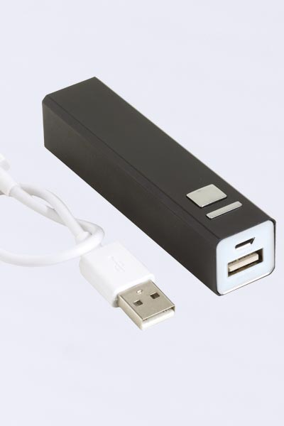 Power Bank 2 ingressi USB